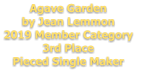 Agave Garden by Jean Lemmon 2019 Member Category  3rd Place Pieced Single Maker