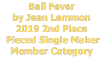 Bali Fever by Jean Lemmon 2019 2nd Place  Pieced Single Maker Member Category